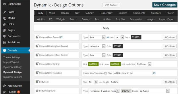 Dynamik Website Builder Options