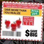 Even A Lazy Couponer Like Me Can Save Quite A Bit Using Coupons And Strategic Shopping