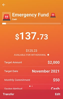 Rize Money Android App