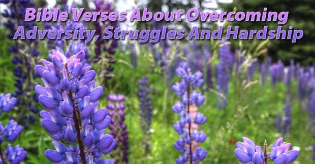 Bible Verses About Overcoming Adversity, Struggles And Hardship