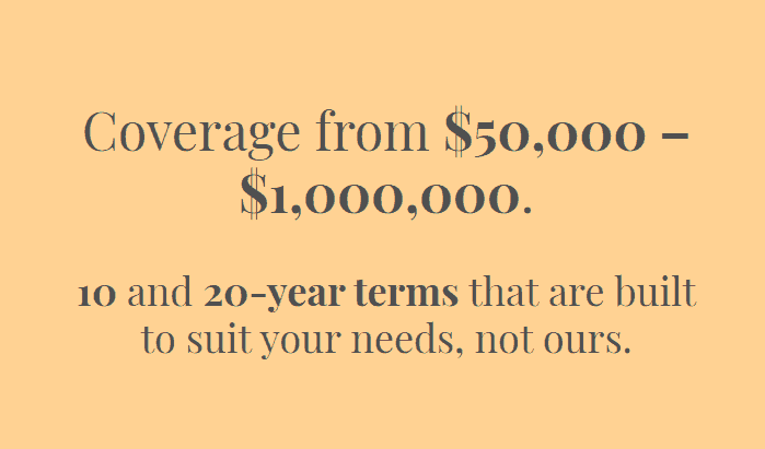 Bestow Life Insurance in 10 and 20 year terms