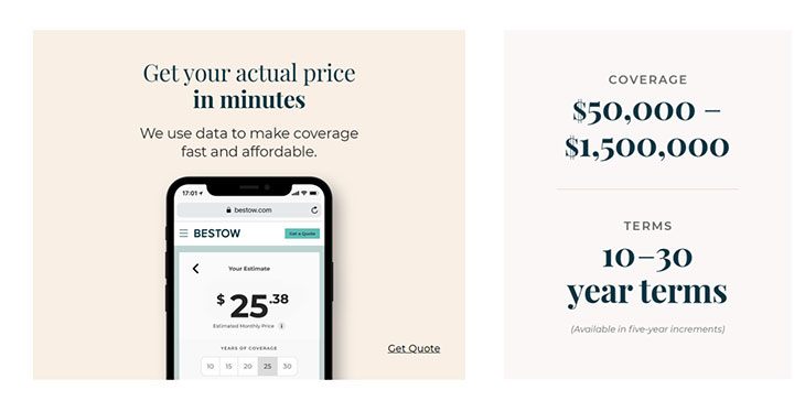 Bestow term life insurance options