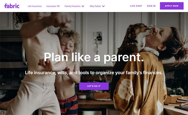 Fabric Life Insurance Review