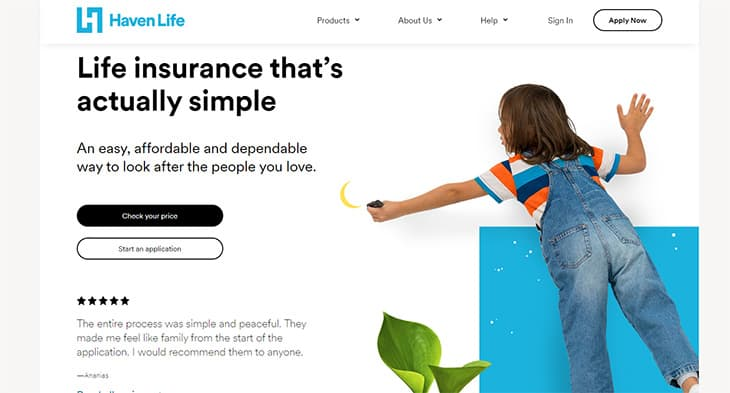 Haven Term Life Insurance Review